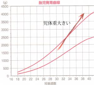 ペース 胎児 体重 増加